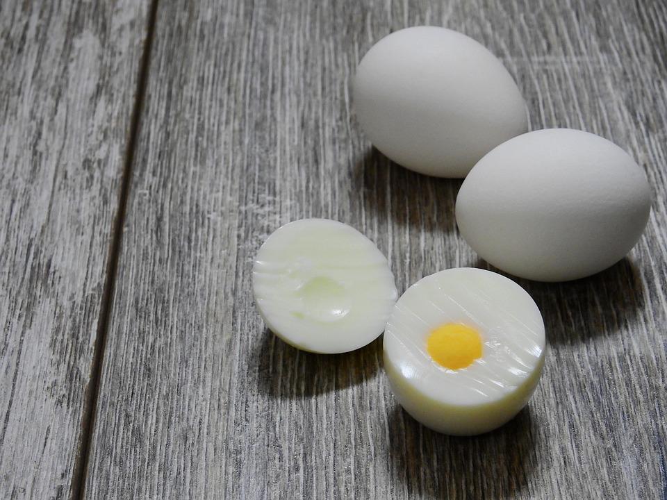 An Egg A Day -V2