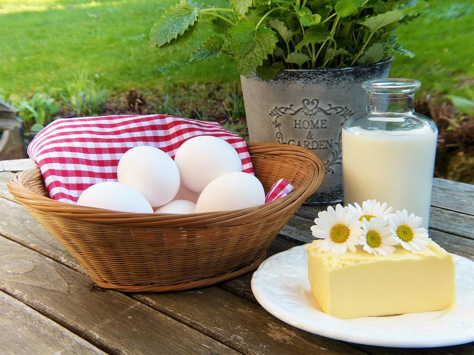 An Egg A Day -V3