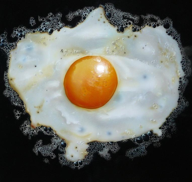 An Egg A Day -V1