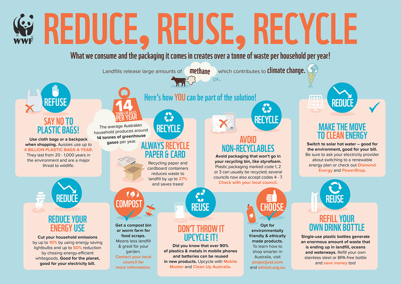 world environment day activities
