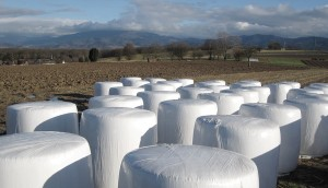 Best Wrapped Silage For Your Animals