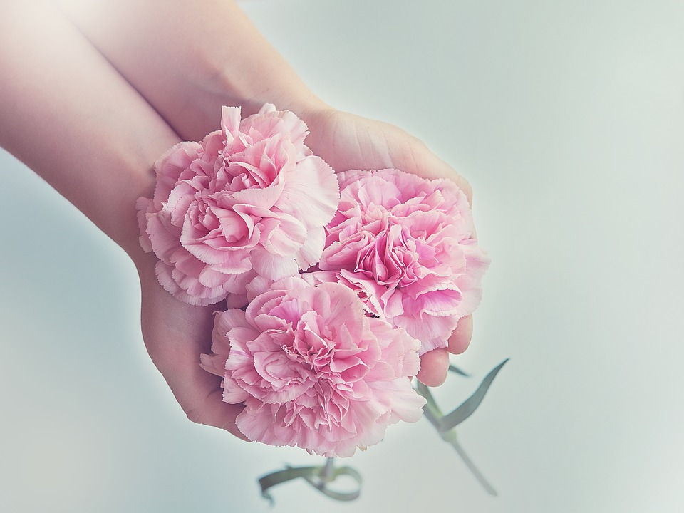 Reasons Why Carnations Are Regarded As The Best Flowers For Mother's Day Bouquet