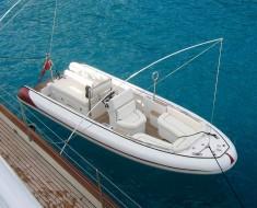 Care and maintenance of dock whips
