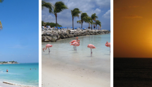 Fun Beaches To Explore While Traveling To Aruba