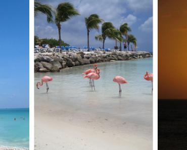 Fun Beaches To Explore While Traveling To Aruba