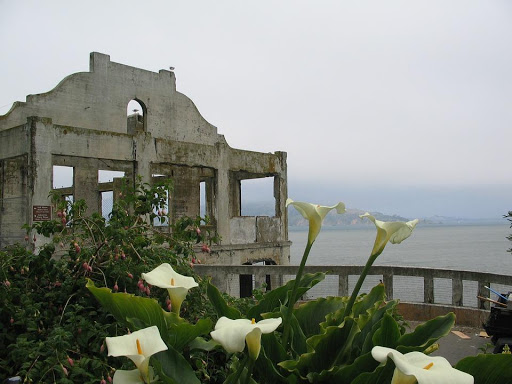 Inmates and officers grew flowers on Alcatraz