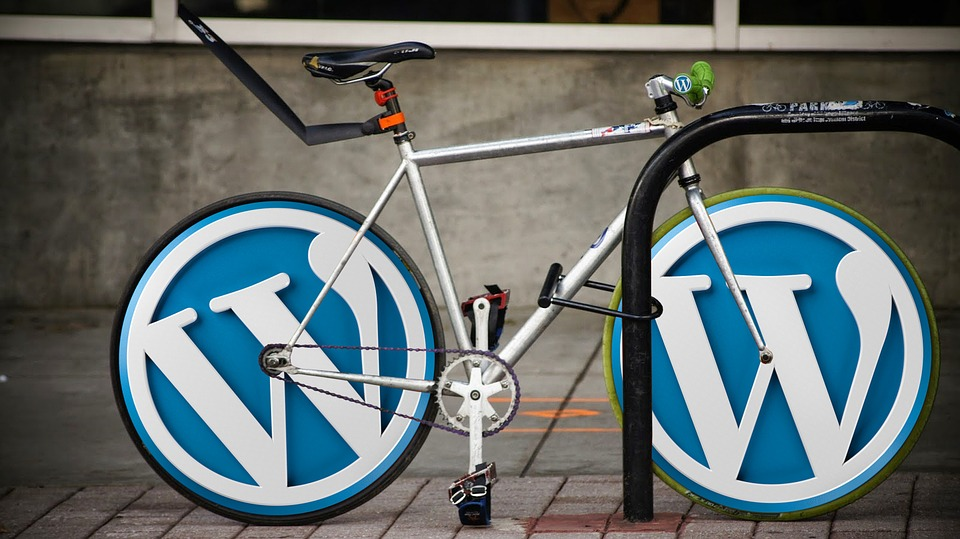 WordPress Errors Can Negatively Affect Your SEO