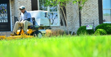Professional Lawn Services_1