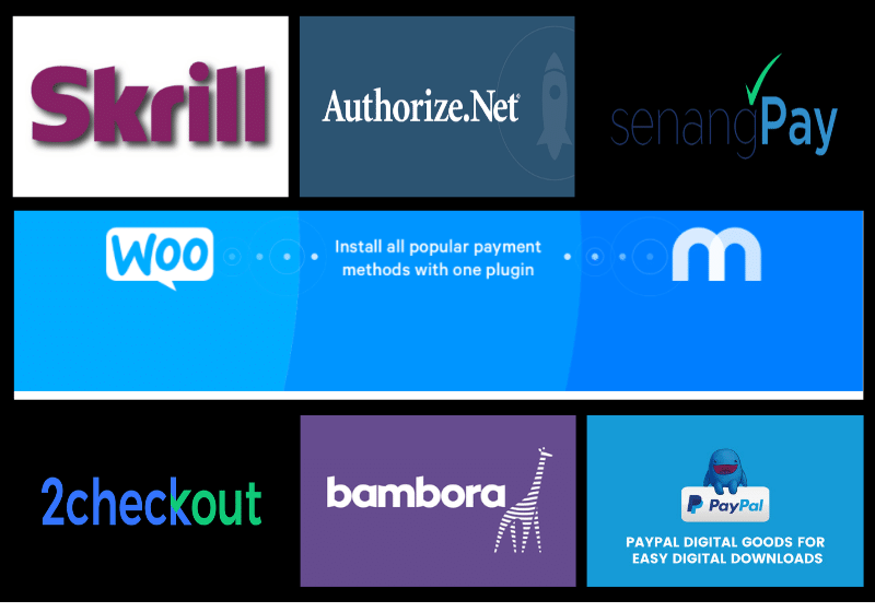 WordPress Plugins For Payment Gateway