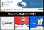 _Wordpress Plugins For Slider