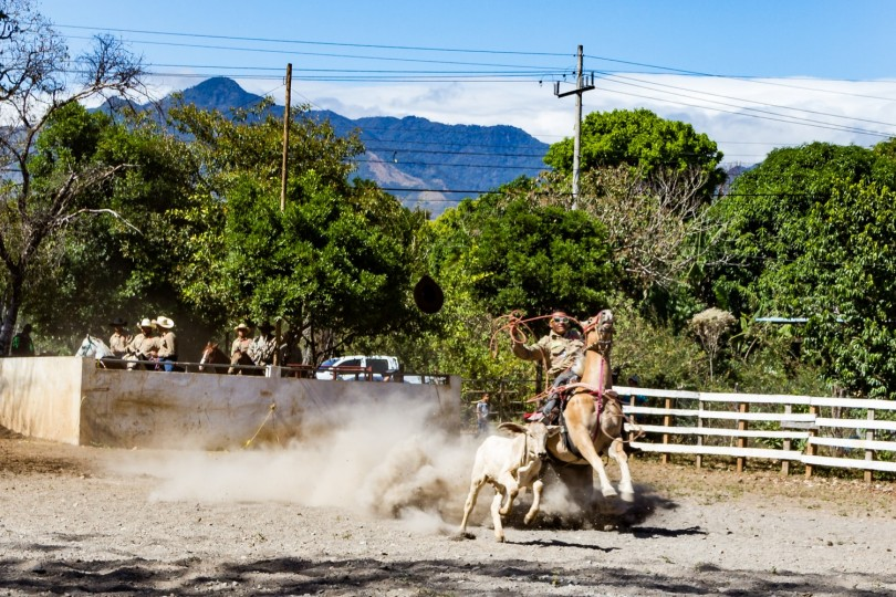 Bull Riding Competition_2