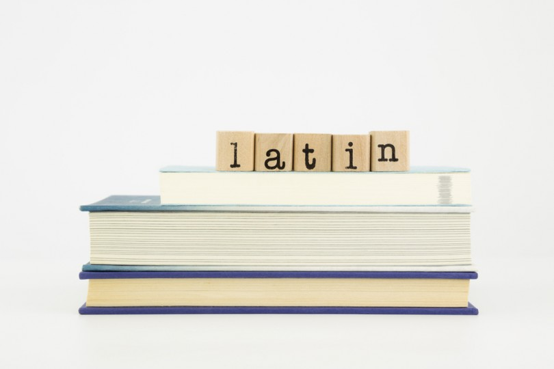 Best Time To Learn Latin