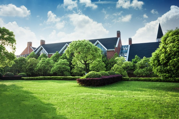 DIY A Garden Arbor