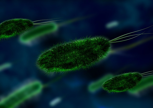 microbes germs