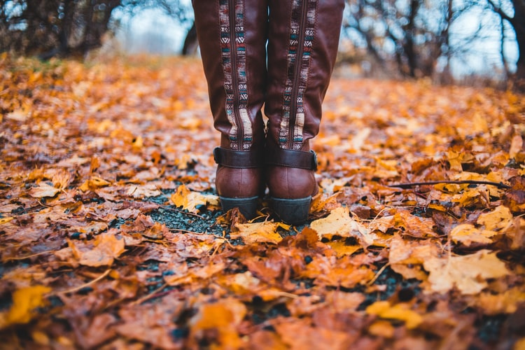 Invest in waterproof boots or shoes