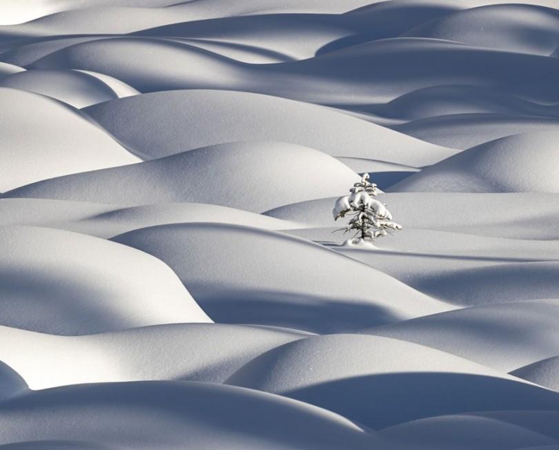 International Landscape Photographer of the Year Award 2020