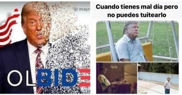 Memes About Donald Trumps